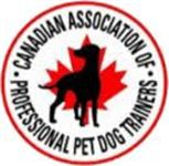 Dog Training, Pet Training - K9 Club - Edmonton, AB